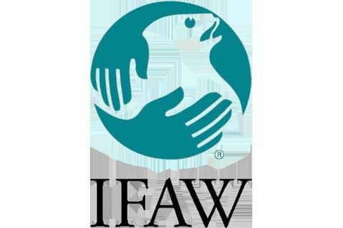 I.F.A.W